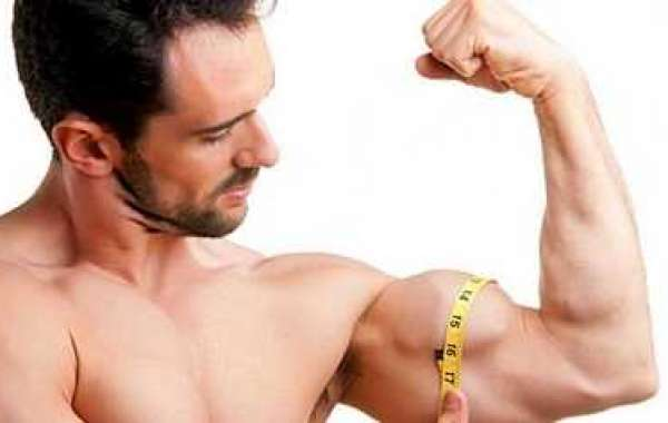 How to Build Muscle mass Throng Closer Than People Constantly Desire